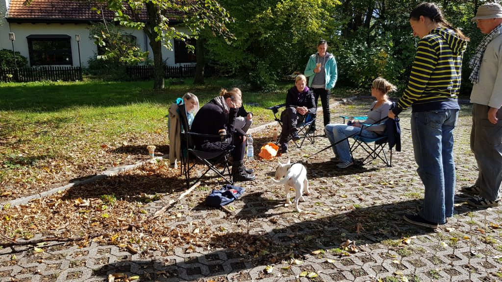 Gruppengespräch - Trainingsstunde