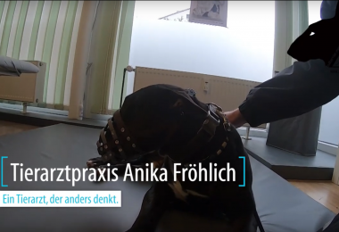 Anika Fröhlich - Chiropraktik