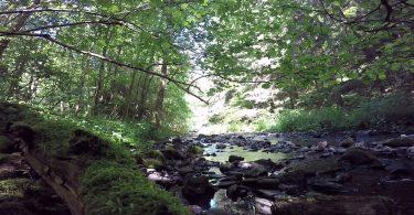 Bachelei im Westerwald