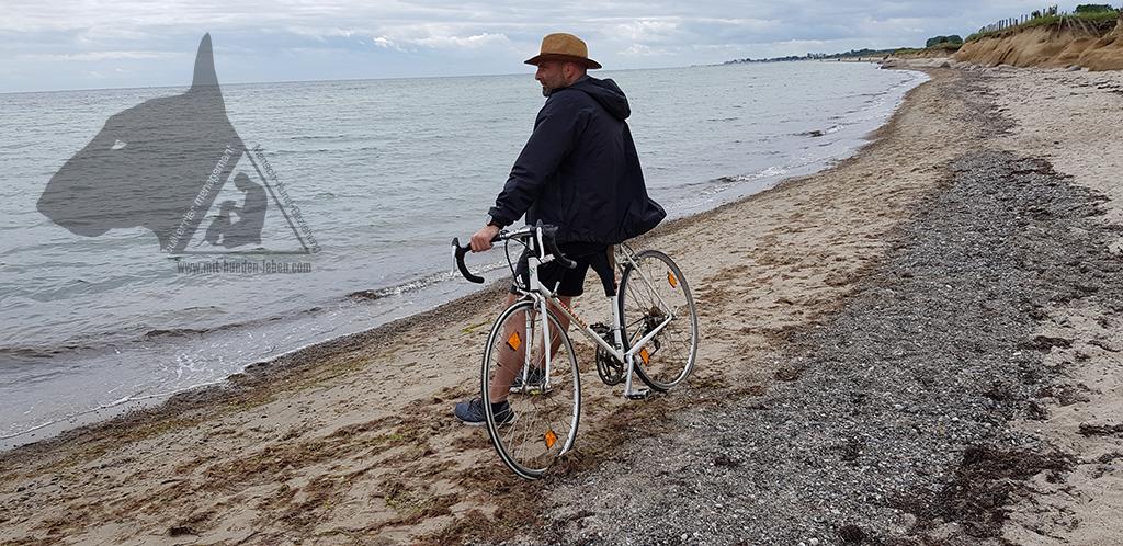 Das Rennrad von Franz - Tod und doch lebendig.