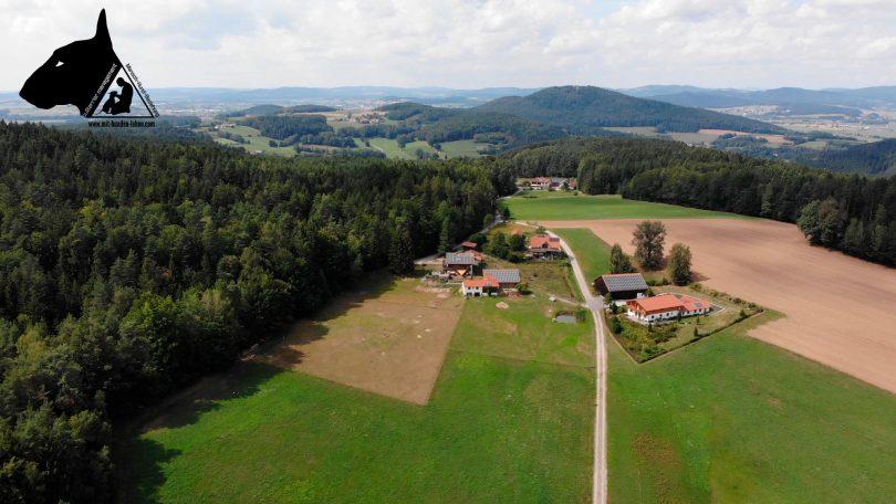 Der Lamahof in Bayern