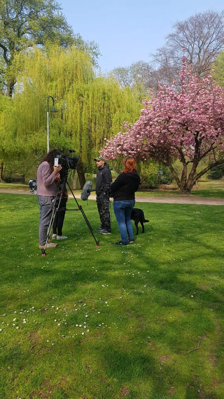 Interview mit dem WDR