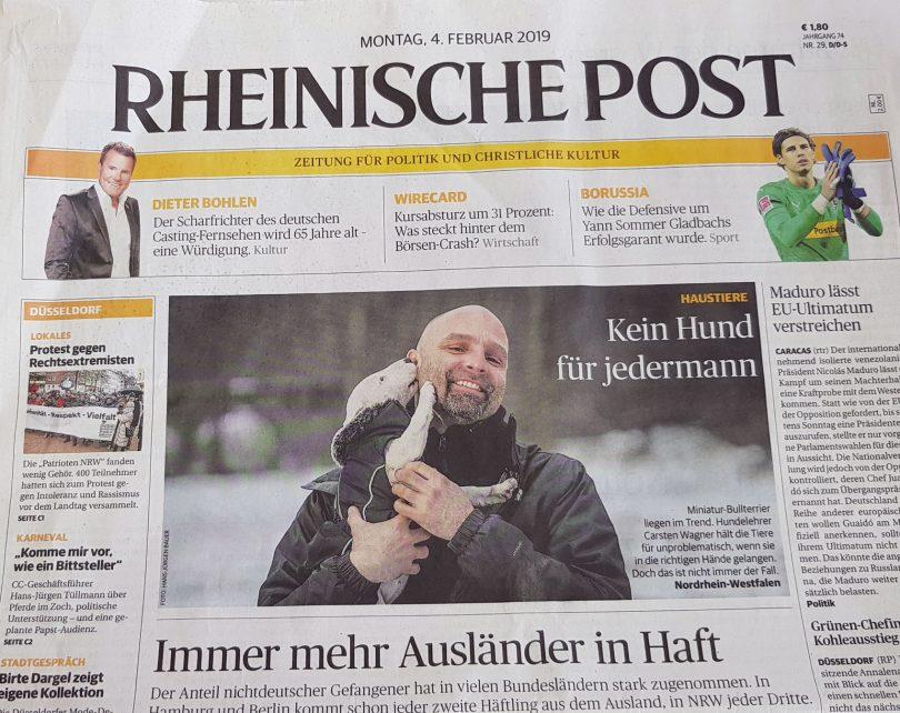 Mit Hunden leben -Hundeschule in der Rheinischen Post