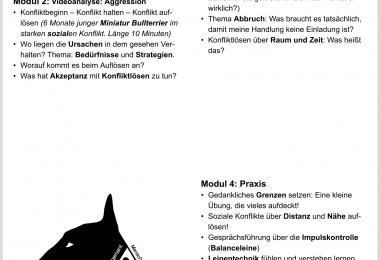 Bullterrier-Seminar-Nürnberg