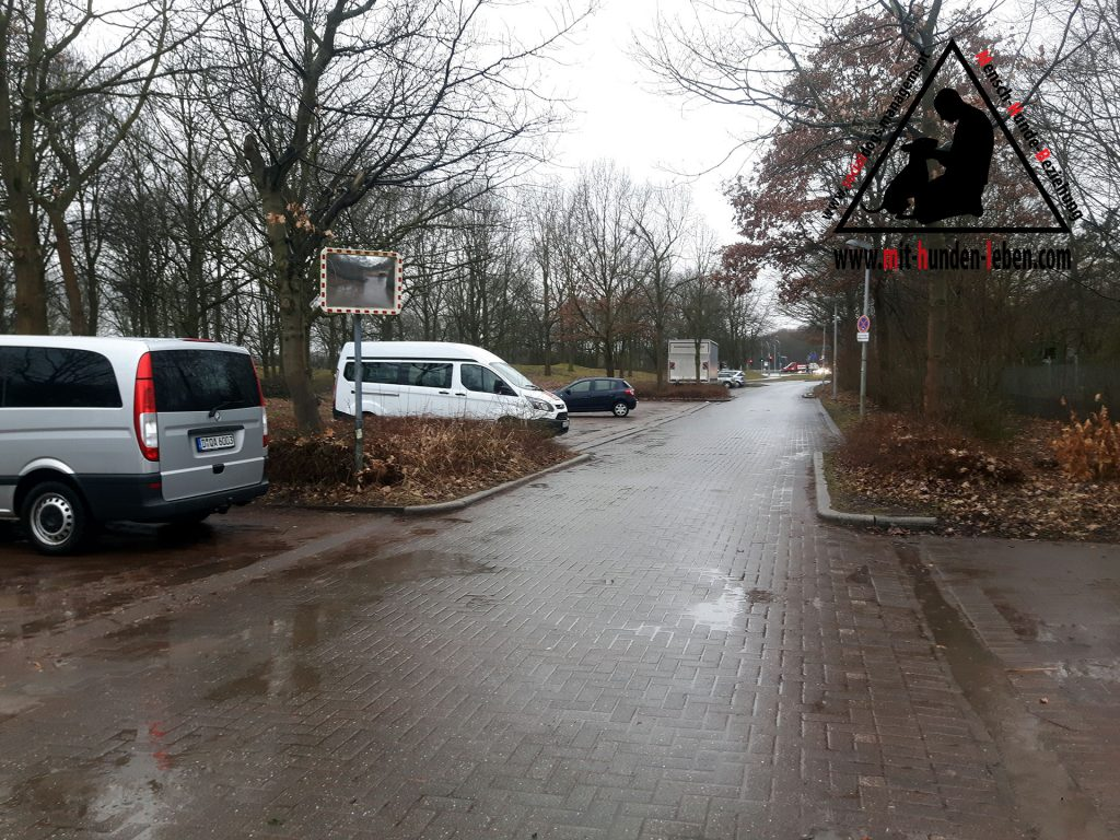 Die Straße zur Haltestelle in der Buga.
