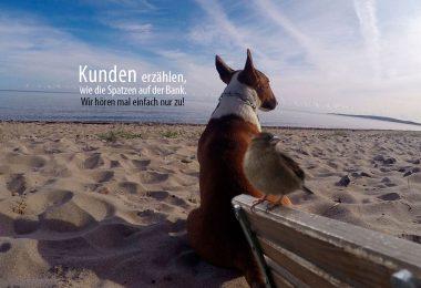 Kunden erzählen - Mit Hunden leben.com