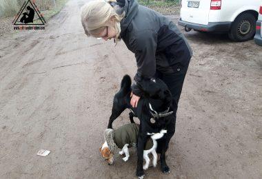Praktikant bei Mit Hunden leben - Hundeschule